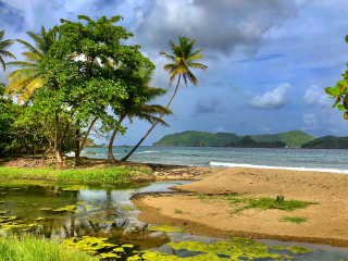 Tobago_Beach_Palmtree_LittleTobago_Thunderstorm_16_9
