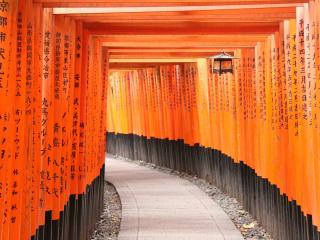 Kyoto_Rote_Tore_16_9_(c)_Shutterstock