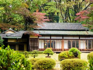 Tokio_Meiji_Teehaus_16_9