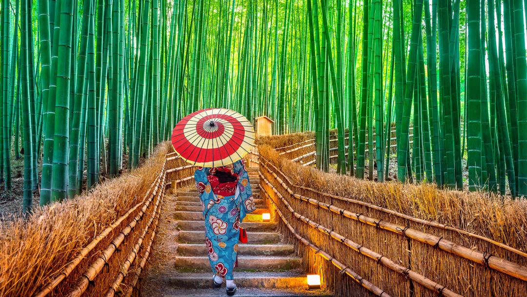 Kyoto_Bambuswald_16_9_(c)_Shutterstock