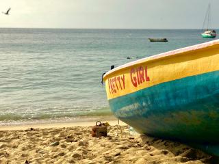 Tobago_Beach_Boat_Bird_16_9